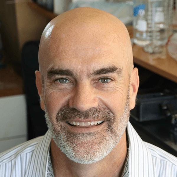 David Niebauer